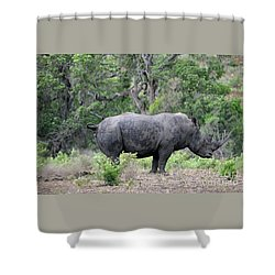 African Safari Naughty Rhino Shower Curtain by Eva Kaufman