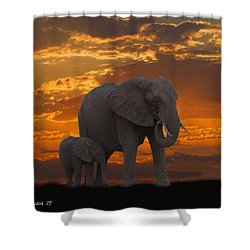 African Sunset-k Shower Curtain