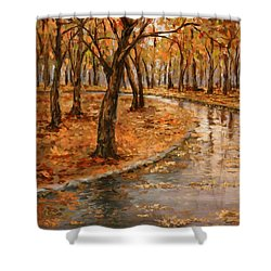 After Rain,walk In The Central Park Shower Curtain