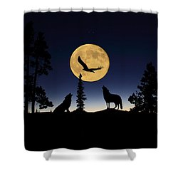 After Sunset Shower Curtain by Shane Bechler