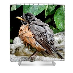 Shower Curtain featuring the photograph After The Bath by Betty-Anne McDonald
