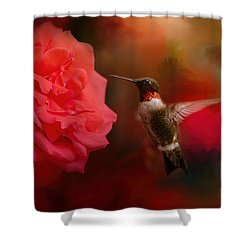 After The Big Rose Shower Curtain