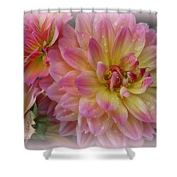 After The Rain - Dahlias Shower Curtain