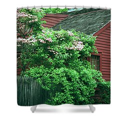 Shower Curtain featuring the photograph After The Rain by Kenneth Campbell