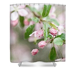 After The Rain Shower Curtain by Lisa Russo