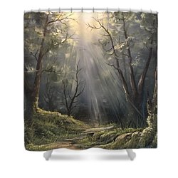 After The Rain  Shower Curtain by Paintings by Justin Wozniak