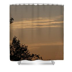 Shower Curtain featuring the photograph After The Rain by Paul SEQUENCE Ferguson             sequence dot net
