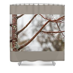 After The Snow 2 -  Shower Curtain