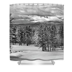 After The Snow  Shower Curtain