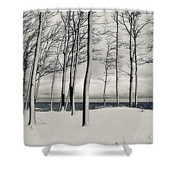 After The Storm 2.0 Shower Curtain
