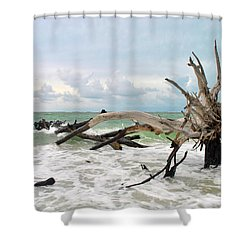 After The Storm Shower Curtain by Margie Amberge