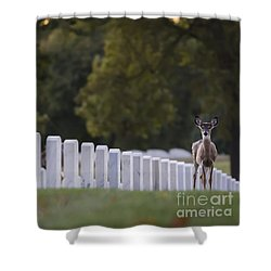 Shower Curtain featuring the photograph After Visiting Hours by Andrea Silies
