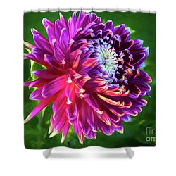 Afternoon Glory Shower Curtain by Kim Andelkovic