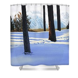 Afternoon In Snowy Mountains Shower Curtain