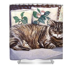 Shower Curtain featuring the painting Afternoon Nap by Laura Aceto