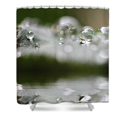 Afternoon Raindrops Shower Curtain