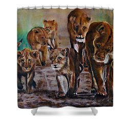 Afternoon Stroll Shower Curtain by Maris Sherwood