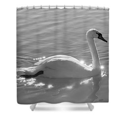 Shower Curtain featuring the photograph Swan Lake by Carolyn Dalessandro
