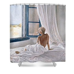 Afternoon View Shower Curtain by John Worthington