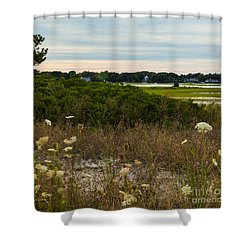 Afternoon Walk Shower Curtain by Michelle Wiarda