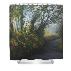 Afternoon Walk Shower Curtain by Valerie Travers