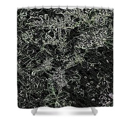 Afterthoughts  Shower Curtain by Rachel Hannah
