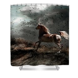 Against All Odds Shower Curtain by Dorota Kudyba
