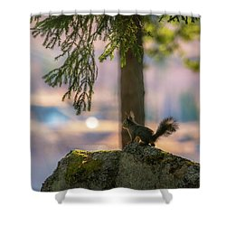 Against Brighter Times Shower Curtain