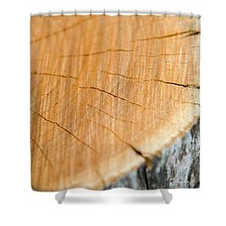 Shower Curtain featuring the photograph Against The Grain by Christina Rollo