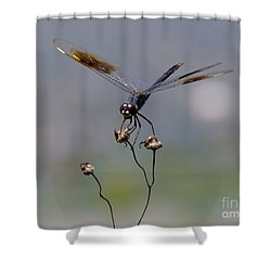 Against The Wind Shower Curtain