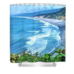 Agate Beach Shower Curtain