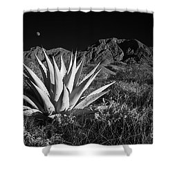 Agave And Moonrise Shower Curtain