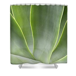 Agave Leaves Shower Curtain by Rich Franco