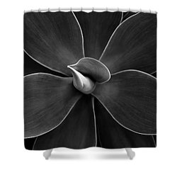 Agave Leaves Detail Shower Curtain by Marilyn Hunt