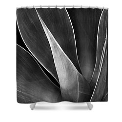 Agave No 3 Test Shower Curtain by Ben and Raisa Gertsberg