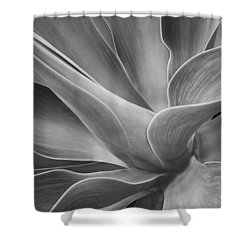 Agave Shadows And Light Shower Curtain