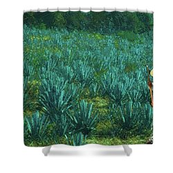 Agave Worker Shower Curtain
