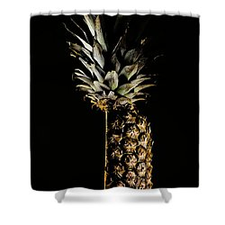 Aged Or Died Shower Curtain