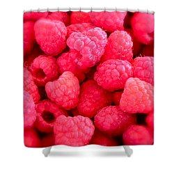 Agenda For Today ... Raspberry Jam Shower Curtain