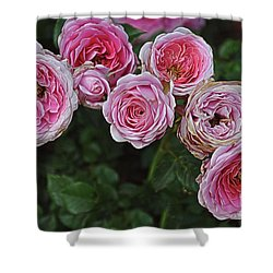 Aging Beauties Shower Curtain by Gina Savage