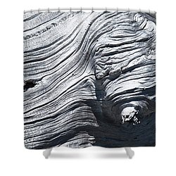 Aging Of Time Shower Curtain
