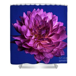 Aglow Shower Curtain