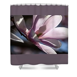 Aglow - Shower Curtain