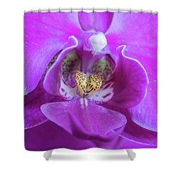 Agnes Shower Curtain