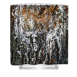Shower Curtain featuring the photograph Agony And Ecstasy by Lynda Lehmann