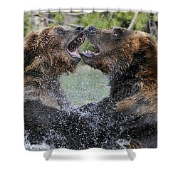 Agree To Disagree Shower Curtain by Sandra Bronstein