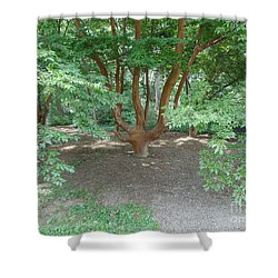 Ahh Trees Shower Curtain