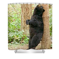 Ahhhhhh Shower Curtain