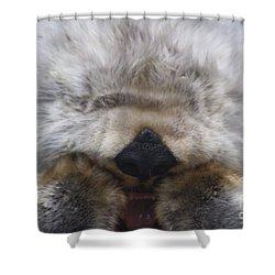 Shower Curtain featuring the photograph Ahhhhhhhh by Nick Gustafson