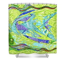 Aigikampos Shower Curtain by Robert Nickologianis